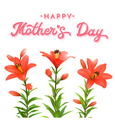 floral greeting card for mothers day red lilies vector image