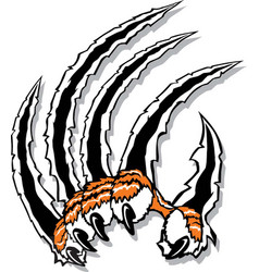 Tiger claw logo mascot vector