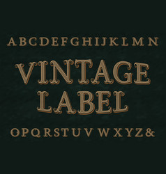 vintage label font isolated english alphabet vector image