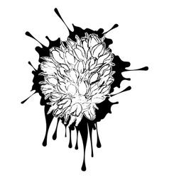 Tulips Grunge Sketch vector image vector image