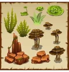 Big set of variety underwater plants and stones vector