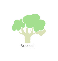 broccoli icon isolated cauliflower vector image