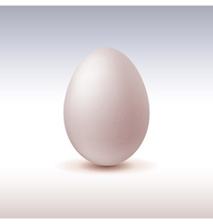 Chicken egg icon on light background vector image