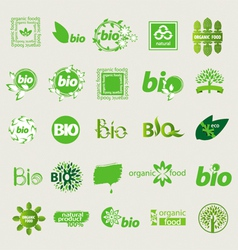 collection of eco sign vector image