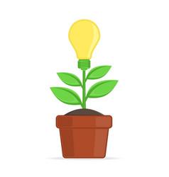 Concept growing idea vector