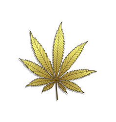 Golden cannabis-marijuana vector