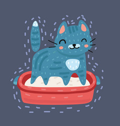 gray cat using cat toilet litter box vector image