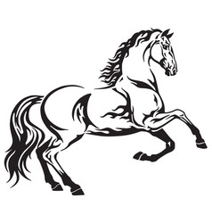 Horse tribal vector
