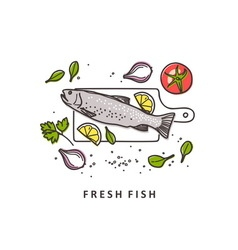 Rainbow trout Fresh fish vector image