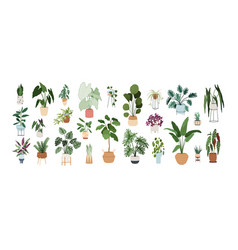 Set trendy potted plants for home different vector