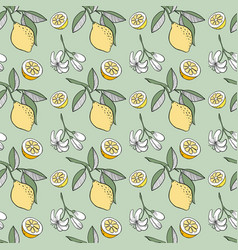 sketched lemon seamless pattern vector image