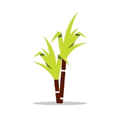 Sugar cane Cartoon vector