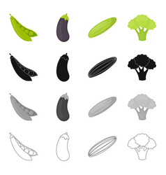 food vegetable garden and other web icon in vector image vector image