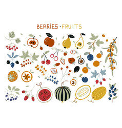 Autumn harvest with garden fruits and berries vector