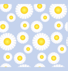 daisy flower seamless pattern for background vector image