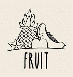 fruit fresh natural food nutrition healthy doodle vector image