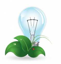 light bulb and insect vector image