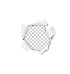 torn hole in the sheet of white paper vector image