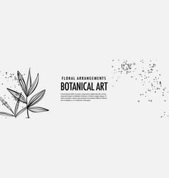 tropical outline leaves and grunge splashes palm vector image
