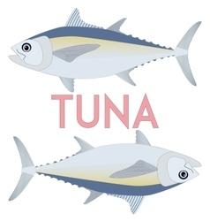 Tuna fish Cool vector