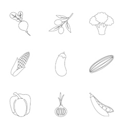 Vegetables set icons in outline style Big vector image vector image