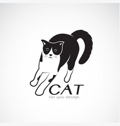 a cat on white background pet animals vector image