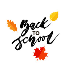 back to school phrase lettering calligraphy autumn vector image