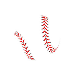 baseball ball on white background vector image