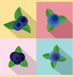 blueberry sweet fruit icons set flat style vector image