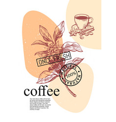 Coffee branch with fruits sketch style vector
