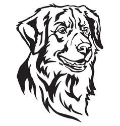 Decorative portrait of dog toller vector