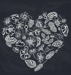 Heart floral design with chalk celandine vector