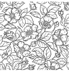 Wild rose flowers seamless pattern vector