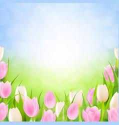pastel spring tulips border vector image vector image