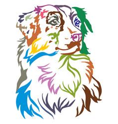 colorful decorative portrait of dog australian vector image