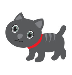 cute gray cat with stripes on white vector image