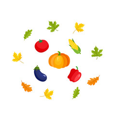 Fall autumn harvest set - leaves and vegetables vector