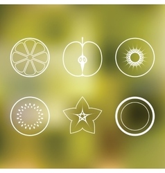 Fruits Icon Pack vector image