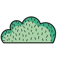 natural bush plant flat design vector image