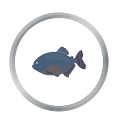 Piranha fish icon cartoon Singe aquarium fish vector image