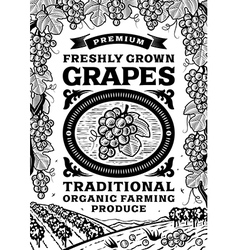 Retro grapes poster black and white vector image