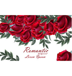 romantic roses card beautiful red roses vector image
