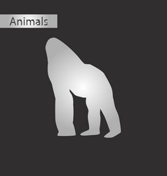 black and white style icon of gorilla vector image