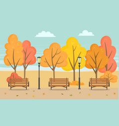 bench and trees autumn season in park vector image