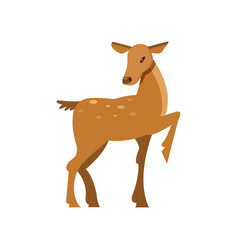 Fallow sika roe deer wild animal cartoon vector
