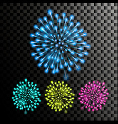 firework festive carnival night sky vector image