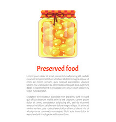 Preserved food cherry plum vector