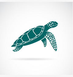 Sea turtle isolated on white background animal vector