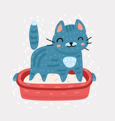 small gray kitten in plastic litter box vector image