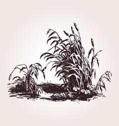 Vintage grass Design element vector